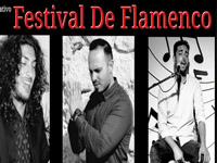 IV Festival Flamenco